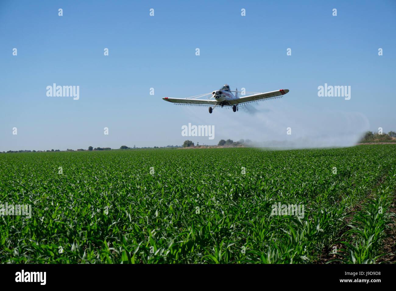 Larga scala agricoltura e irrorazione delle colture, Messico, America del Nord Immagini Stock