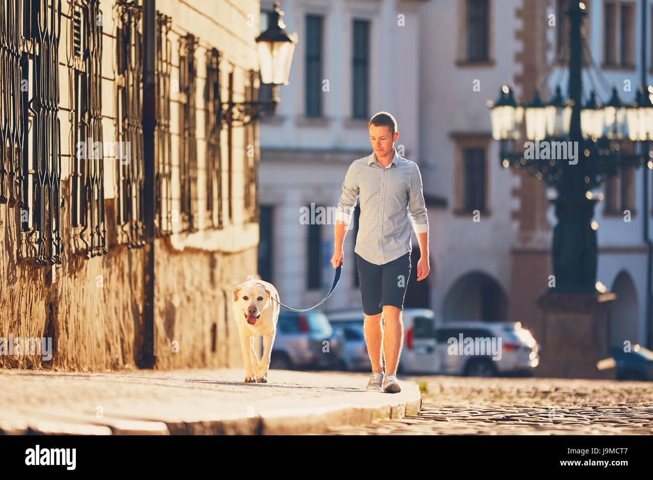 La mattina in città. Giovane uomo che cammina con il suo cane sulla vecchia strada al golden sunrise. Praga, Immagini Stock