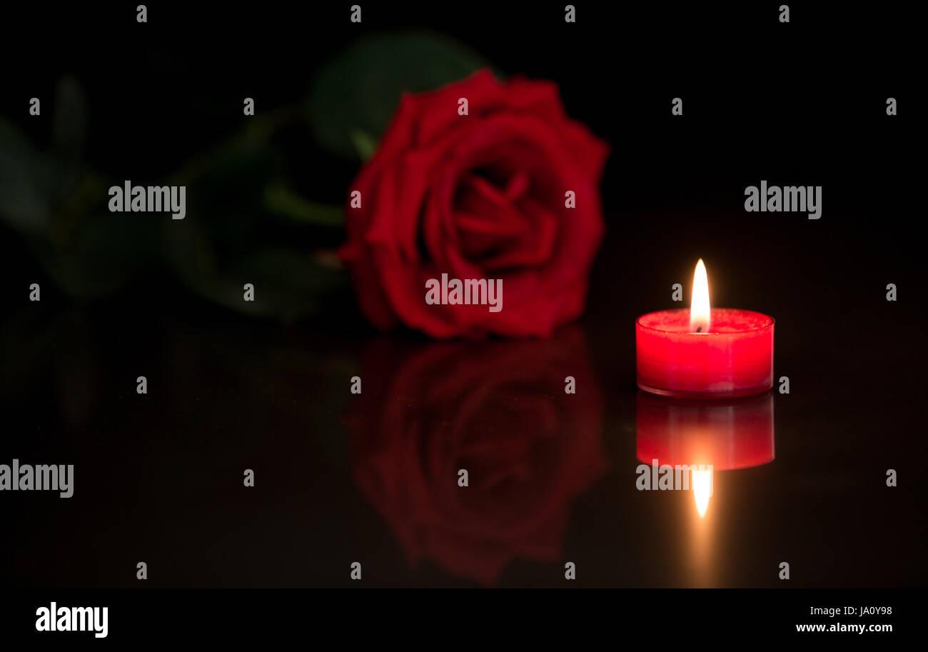 Romantico Ambiente A Lume Di Candela Con Una Rosa Rossa Su Sfondo