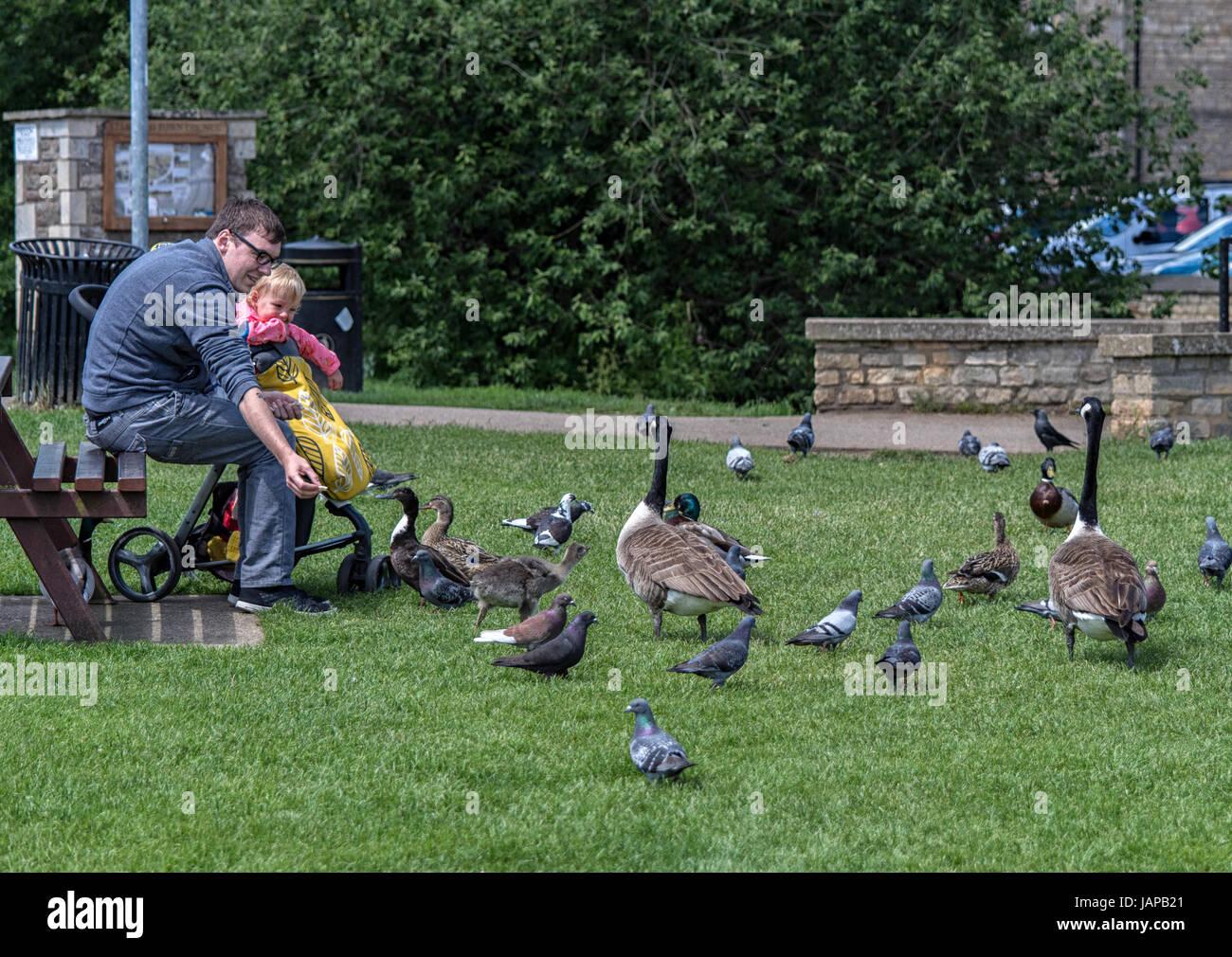 canada goose 2017 BLU