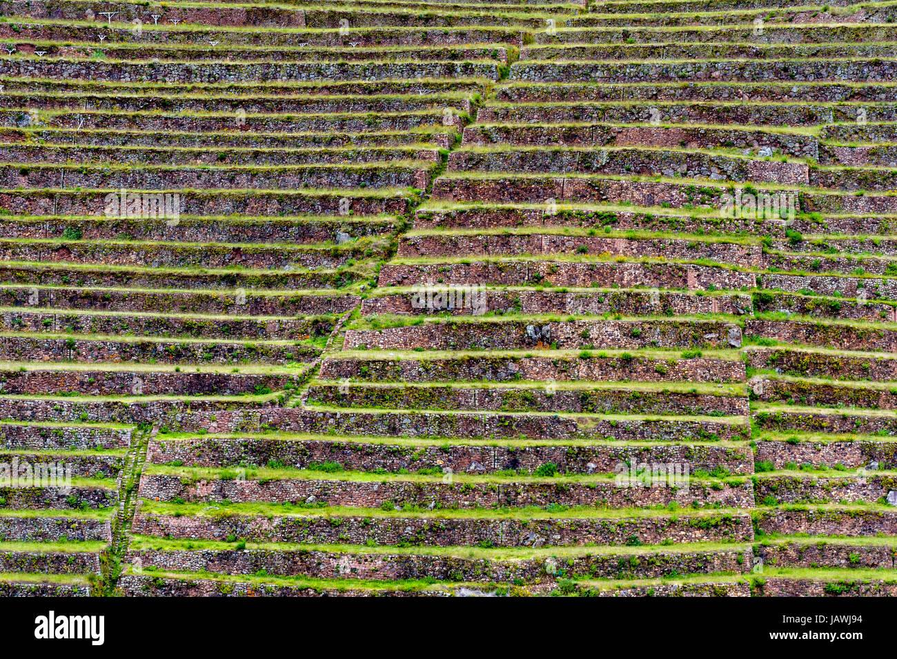 Beautiful Terrazzamenti In Collina Pictures - Idee Arredamento Casa ...
