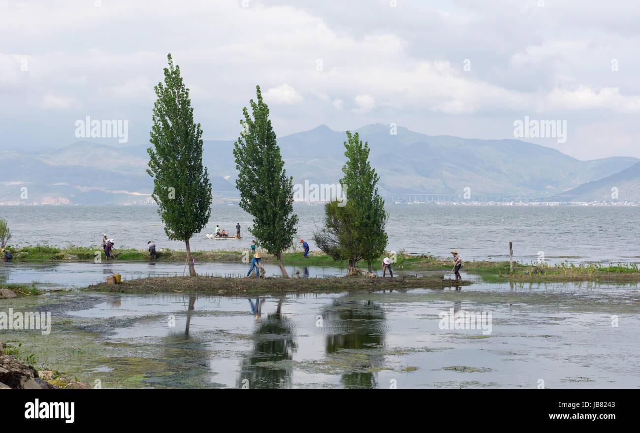 Gli agricoltori sulla riva e pescatori per Er Hai lago, vicino a Dali, Yunnan, Cina Immagini Stock