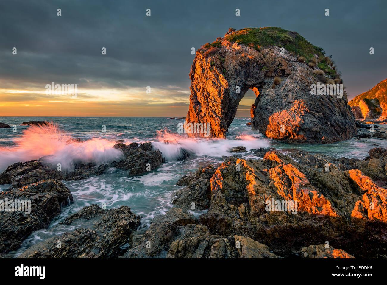 Suntrese a testa di cavallo Rock sulla riva del Nuovo Galles del Sud. Foto Stock
