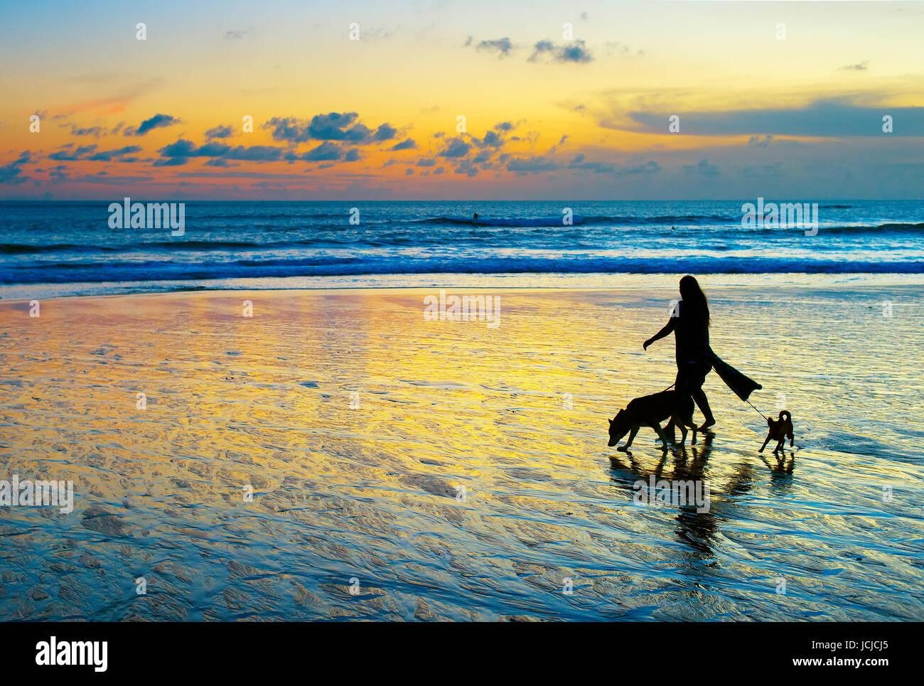 Donna con due cani a camminare su una spiaggia al tramonto. Isola di Bali Immagini Stock