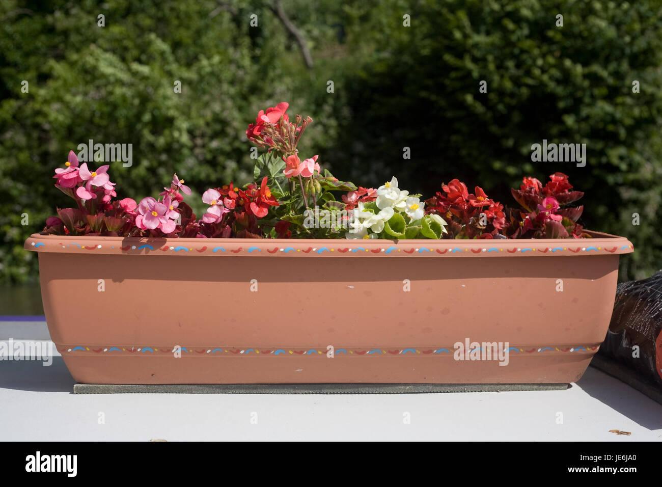 Vasca Da Bagno Stretta : Fiore di terracotta vasca sul ponte di prua della barca stretta sul