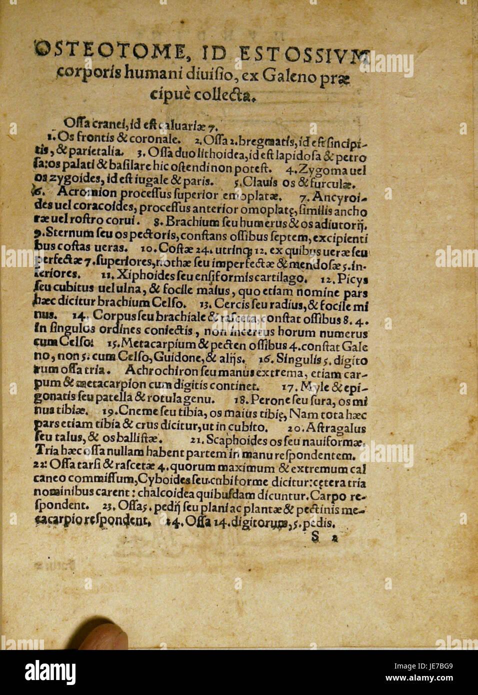 Dryander Anatomia Mundini 131 Immagini Stock
