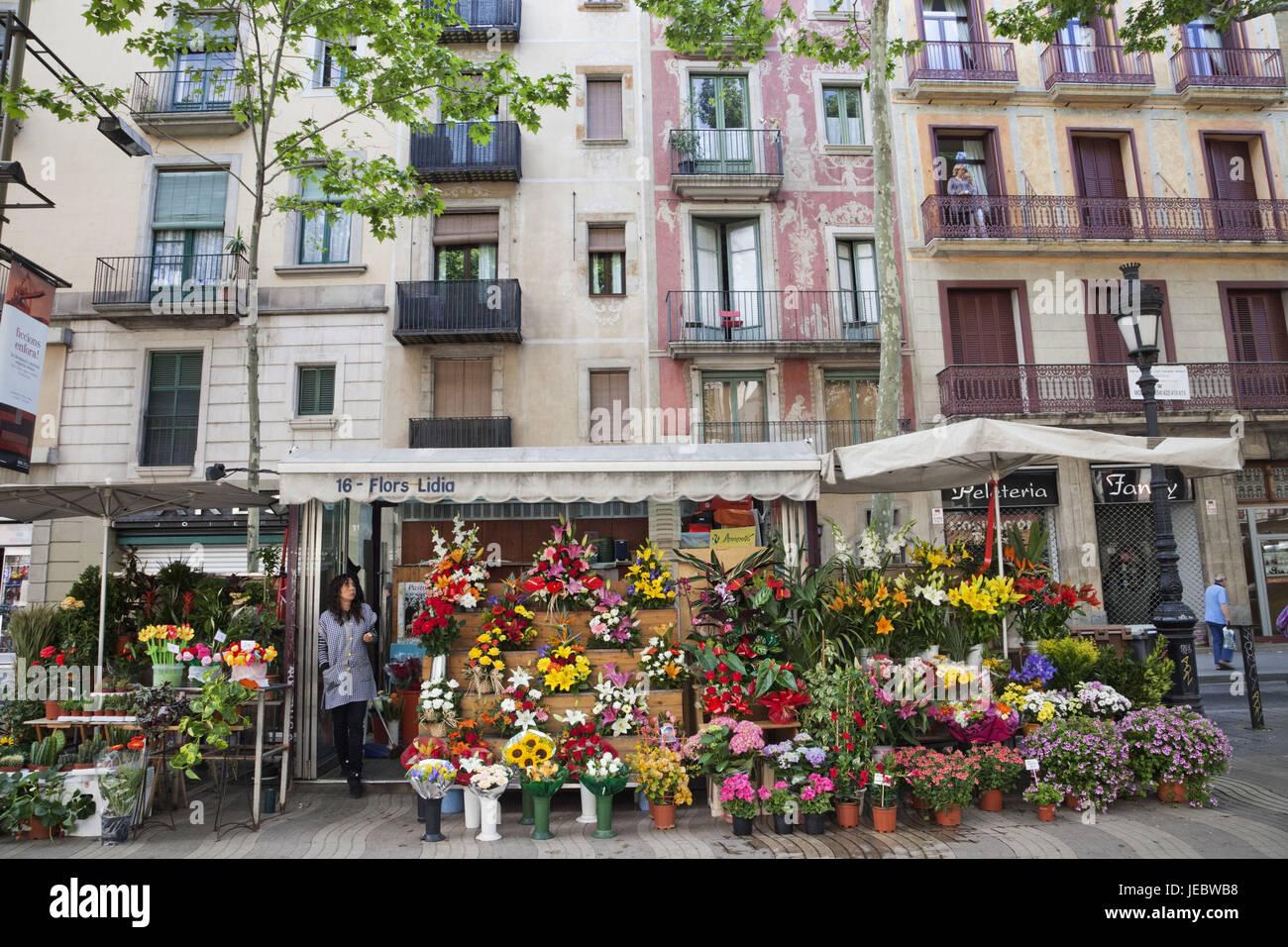 Spagna, Barcellona, Ramblas, fiore stand, Immagini Stock