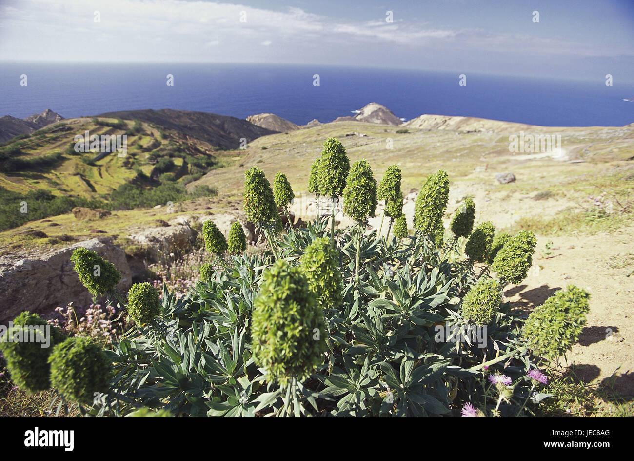 Il Portogallo, isola di affrancatura Santo, Pedregal de dentro, paesaggi costieri, costa Atlantica, Costa, paesaggio, Immagini Stock