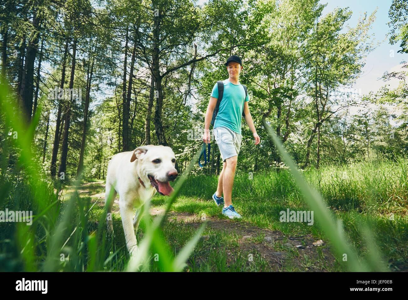 Giovane uomo che cammina con il suo cane (labrador retriever) nella foresta. Orario estivo e vacanze in tema. Immagini Stock