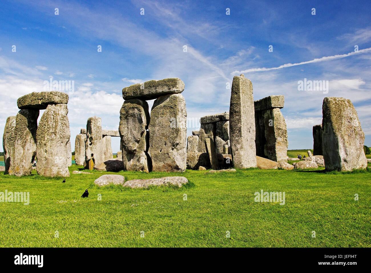 Stonehenge, Wiltshire, Gran Bretagna, Grossbritannien Foto Stock