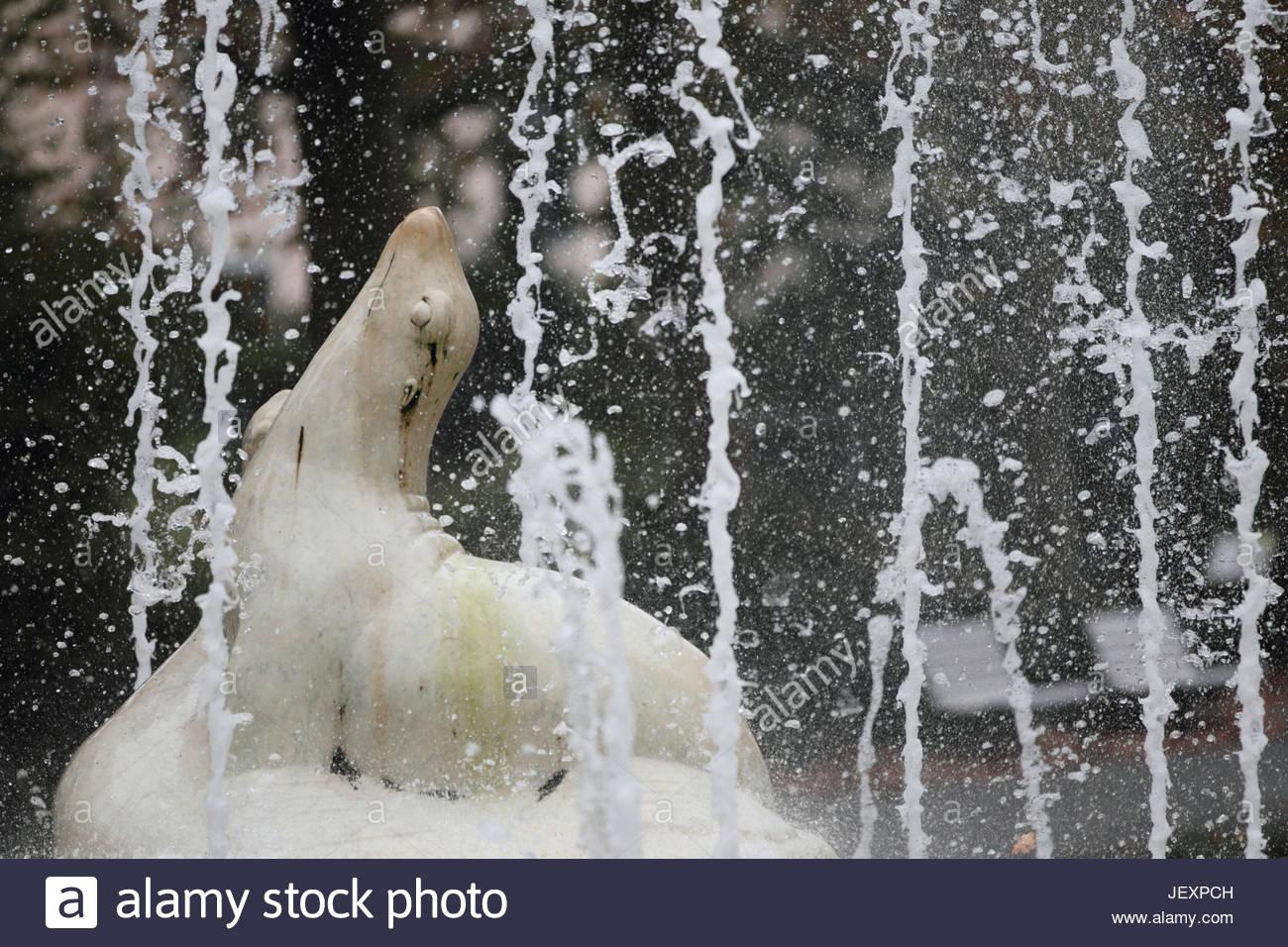 Una fontana ornata da una scultura di una guarnizione di tenuta. Immagini Stock