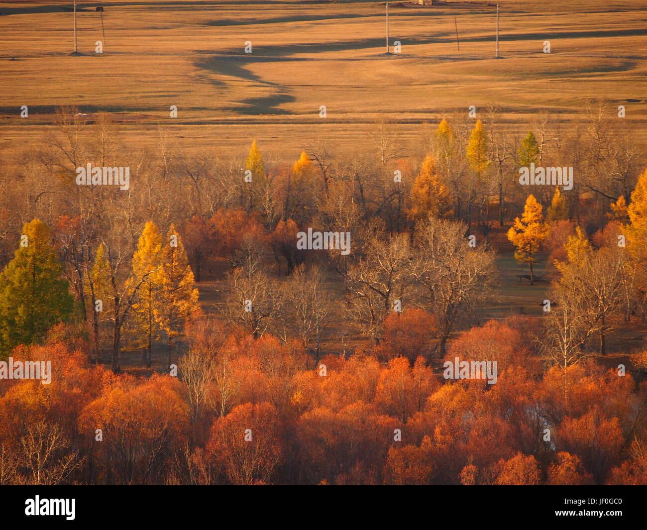 Tranquillo paesaggio mongola in luminosi colori arancione Immagini Stock