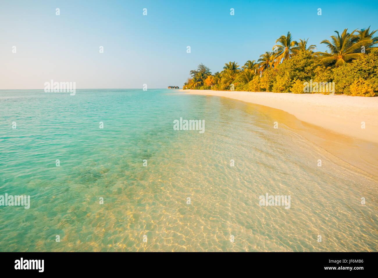 Una perfetta spiaggia vista. Estate vacanze e vacanze design. Di ispirazione spiaggia tropicale, palme e la sabbia Immagini Stock