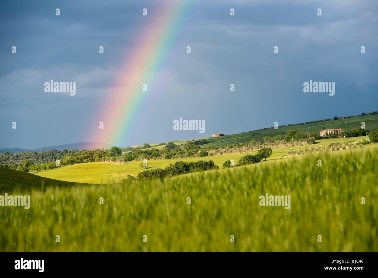 L'Italia, Toscana, Siena distretto, Val d'Orcia - arcobaleno dopo la tempesta Foto Stock