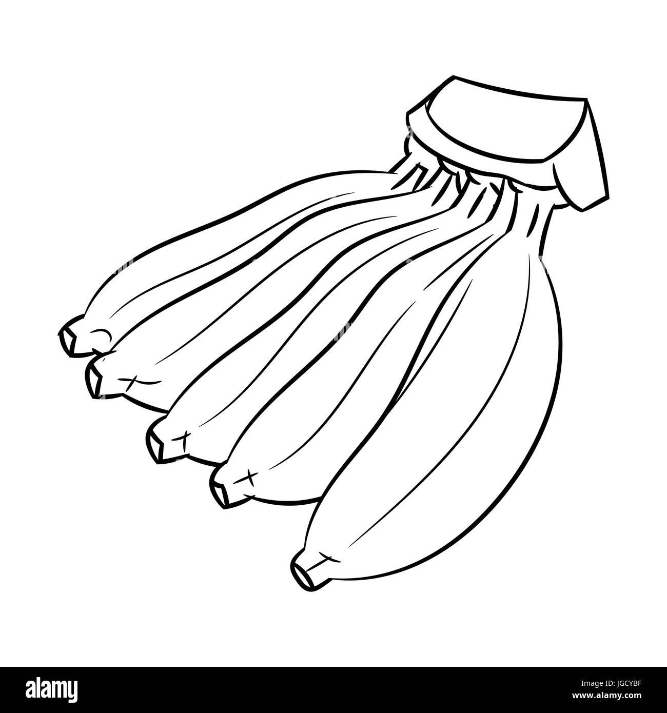Mano Bozzetto Di Coltivare Banane Isolato In Bianco E Nero Del