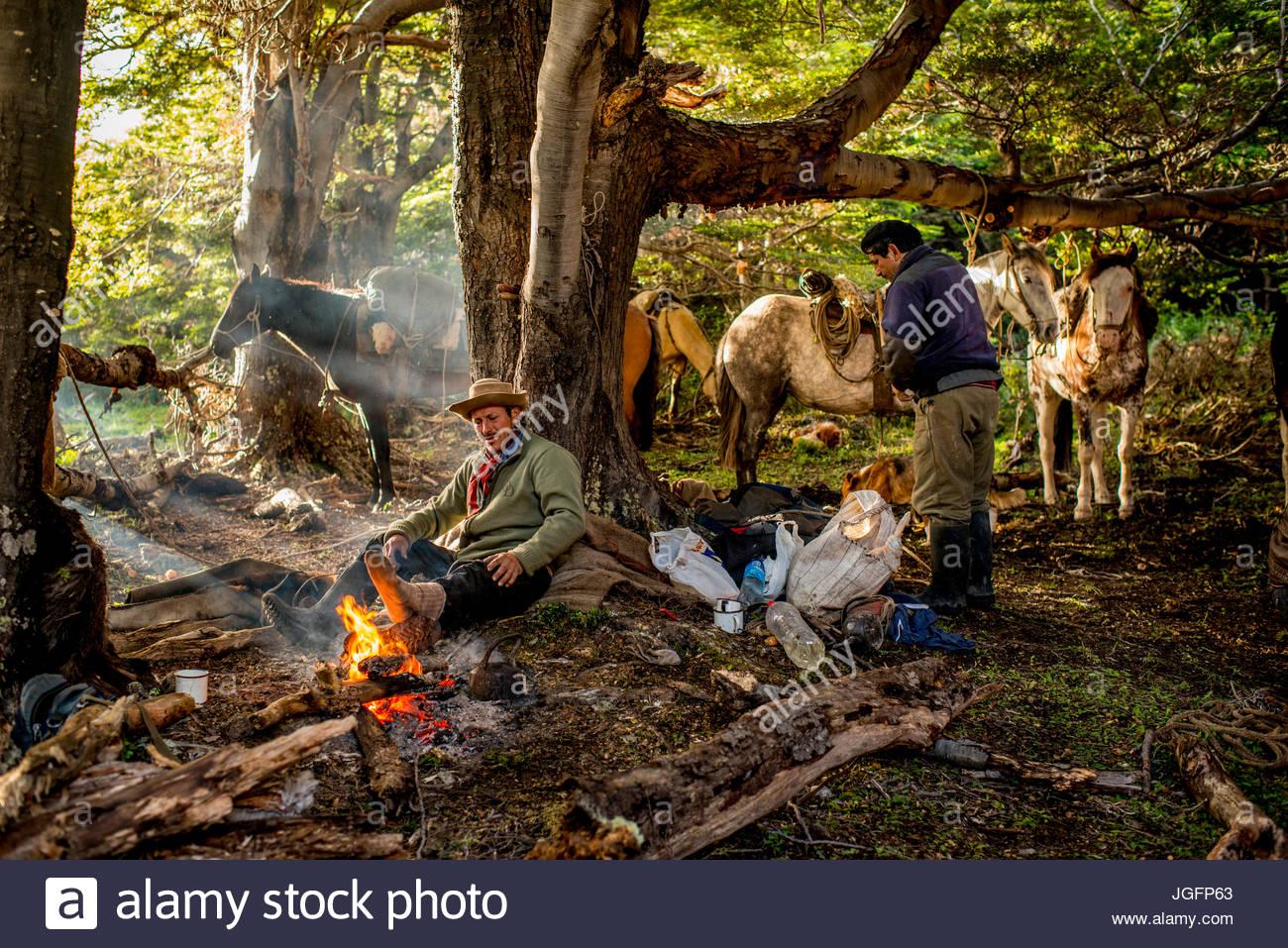 Bagualeros, cowboy che cattura di animali selvatici, mangiare la prima colazione e i cavalli di carico su un viaggio. Immagini Stock