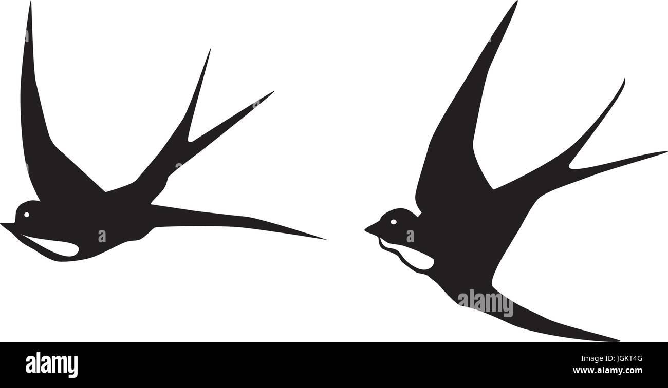 Illustrazione Vettoriale Di Rondini In Volo Uccelli Sagome
