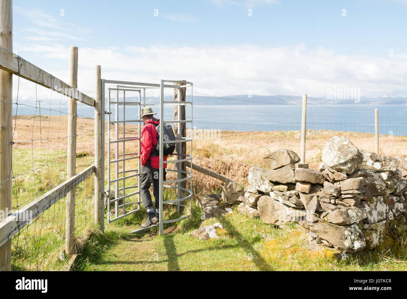Deer prova metal di gate e scherma - penisola di Applecross, Wester Ross, Highland, Scotland, Regno Unito Immagini Stock