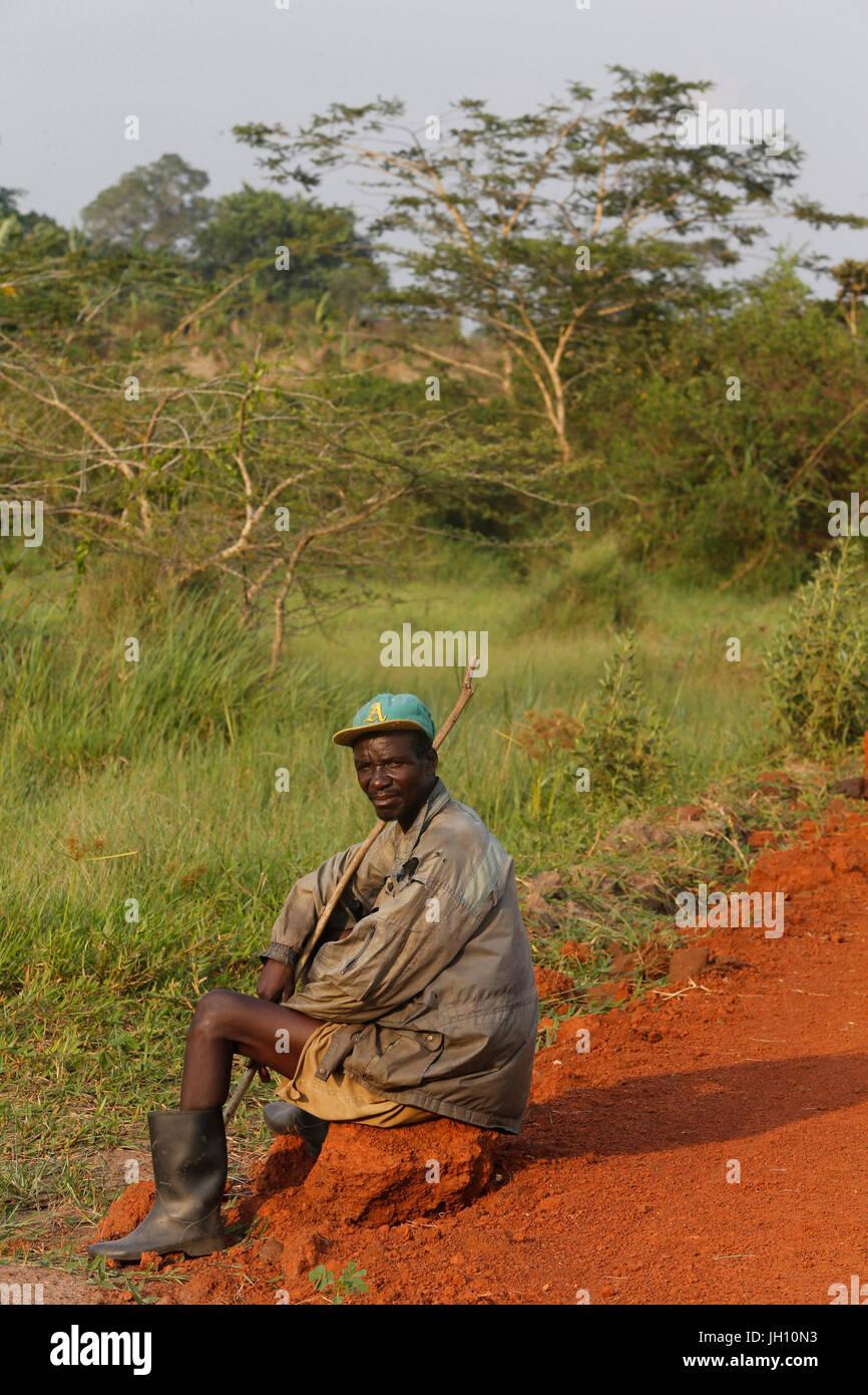 Bovini herder. Uganda. Immagini Stock