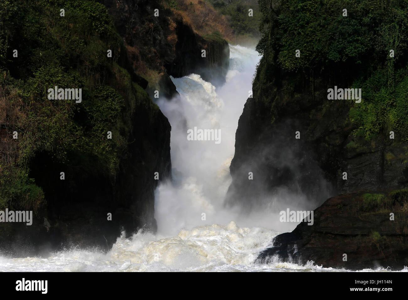 Murchison Falls, Uganda. Uganda. Immagini Stock
