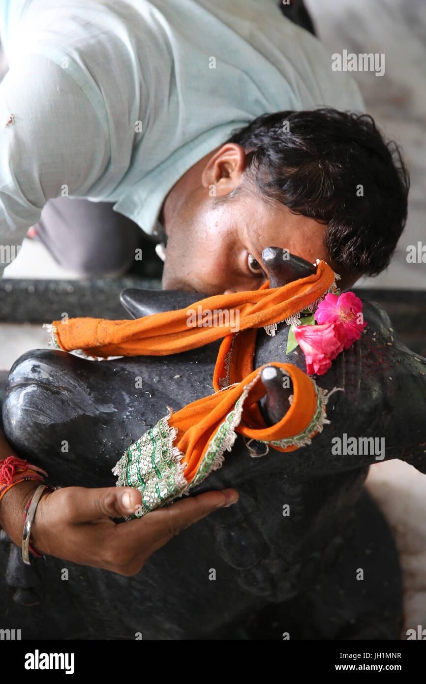 La devozione in Raman Reti tempio indù. India. Immagini Stock