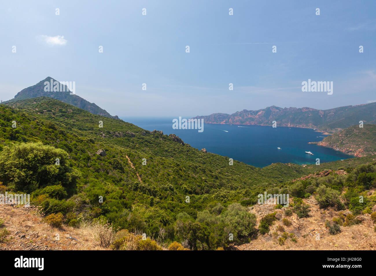 Vista superiore del mare turchese e baia incorniciata dalla vegetazione verde sul promontorio, Porto, Sud Corsica, Immagini Stock