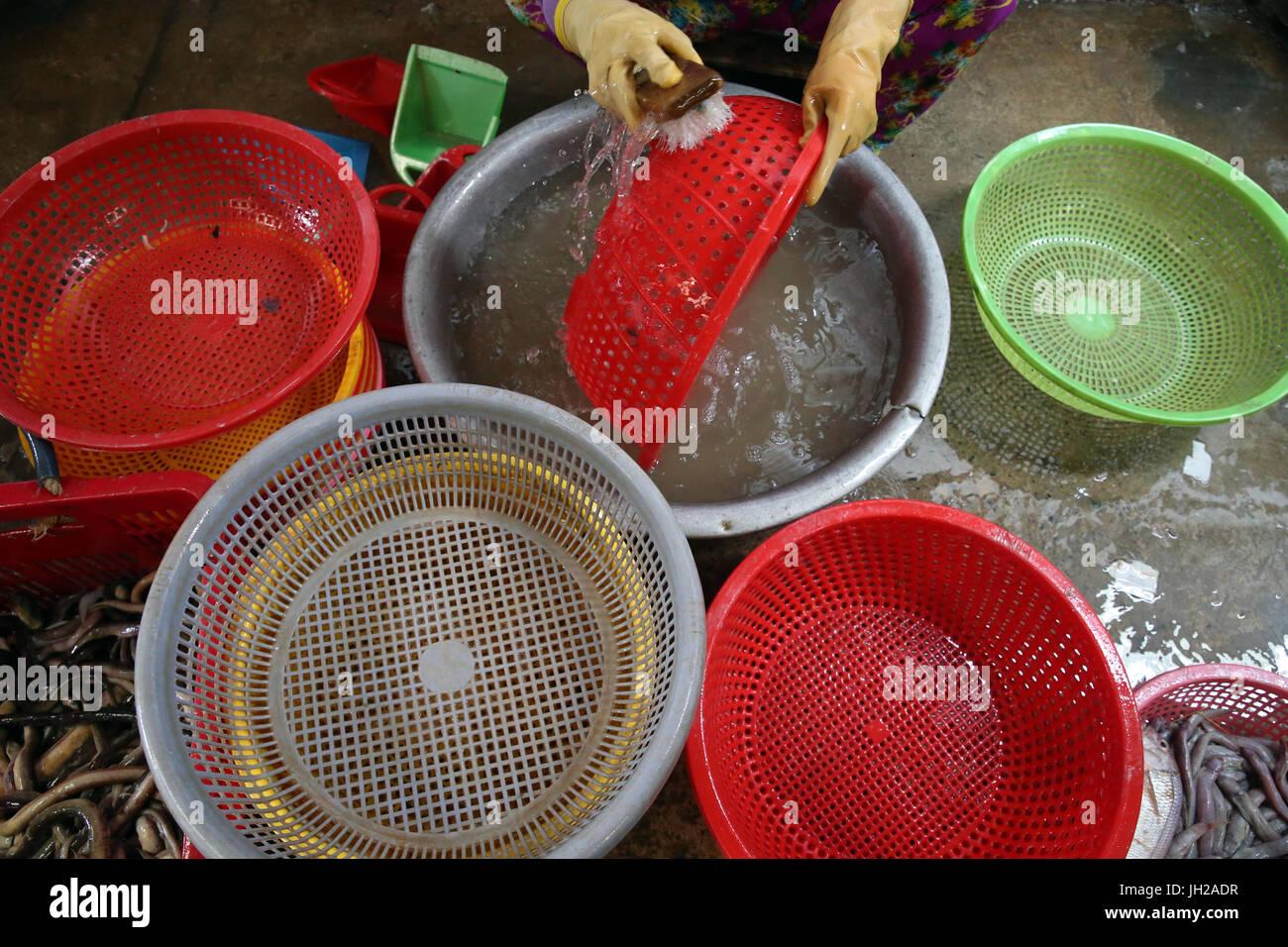 Donna di lavaggio cestini di plastica. Il Vietnam. Immagini Stock