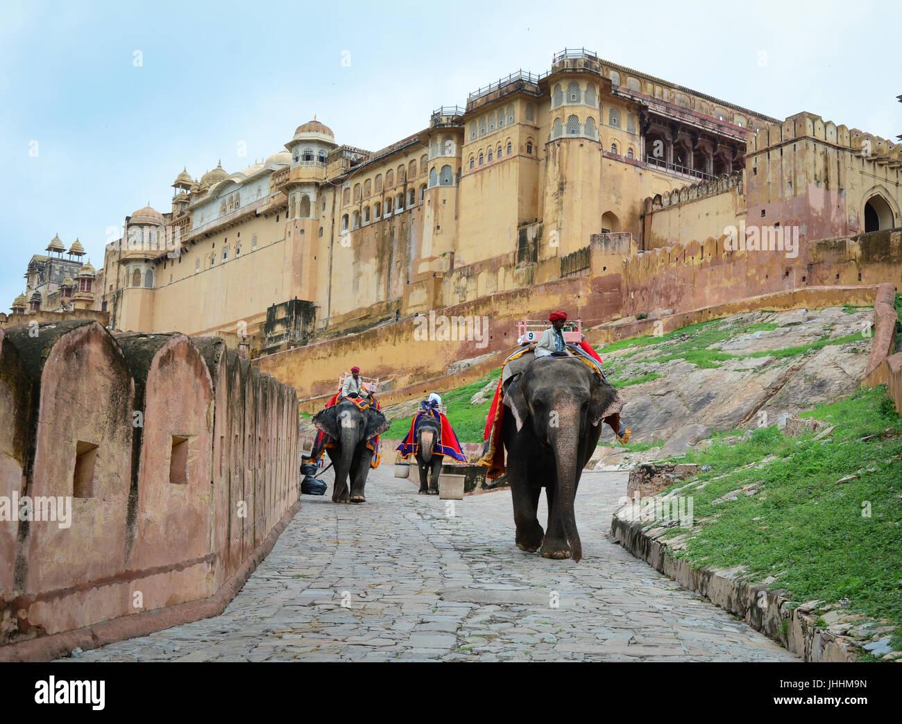 JAIPUR, INDIA - Lug 28, 2015. Unidentified mahouts e i loro elefanti vicino al Forte Amber, magnifico palazzo fortificato. Foto Stock