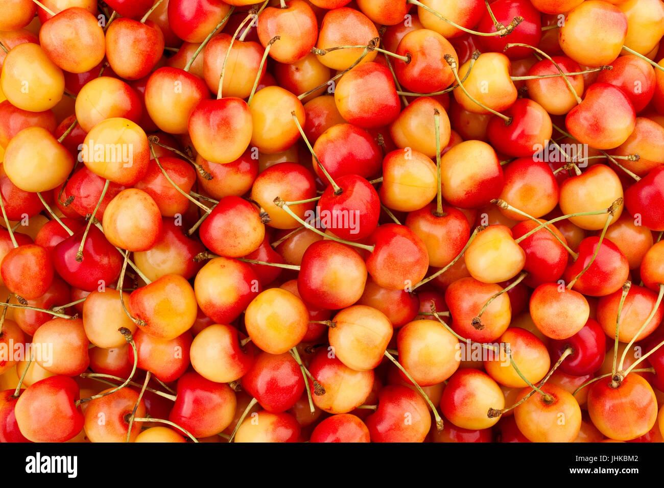 Giallo rosso ciliegia texture pattern di piastrella foto