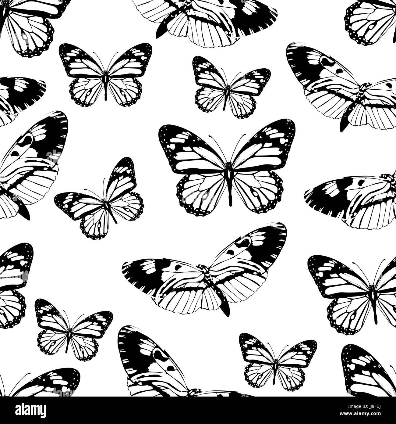 Natural Winged Vector Vectors Immagini Natural Winged Vector