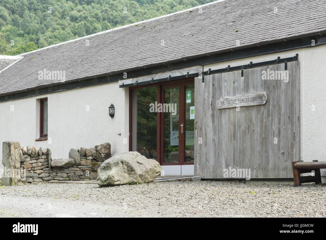 Cashel foresta nativa centro appartenente alla Royal Scottish società forestali, Loch Lomond Scozia, Regno Immagini Stock