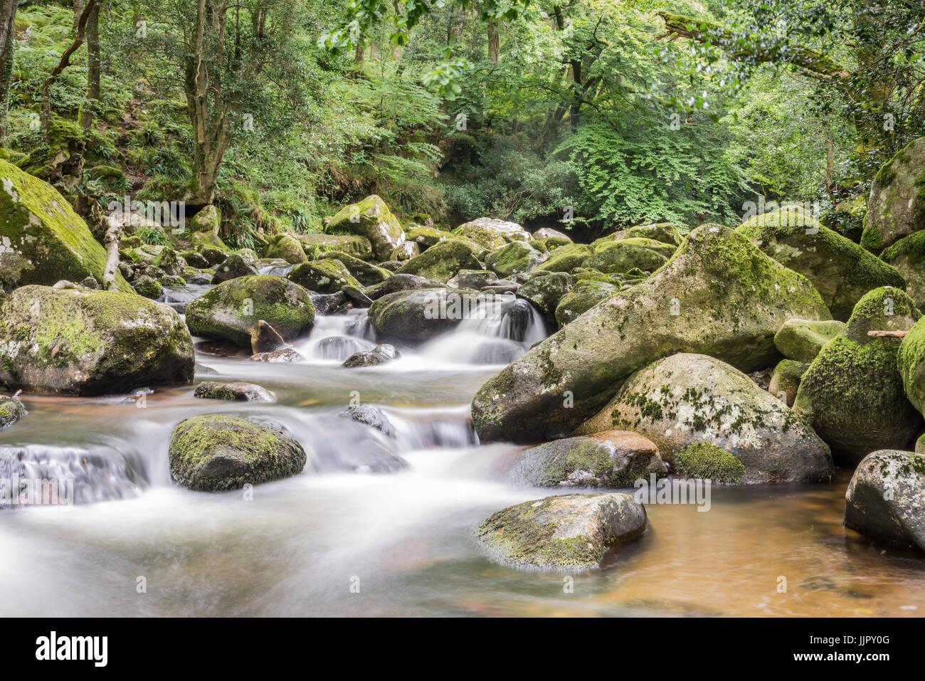 Una lunga esposizione foto del fiume Plym in Devon Foto Stock