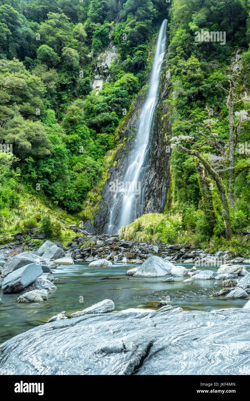 Nuova Zelanda, Isola del Sud, thunder creek scende al fiume haast Immagini Stock