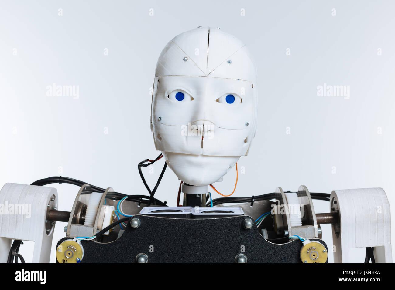 Ritratto di un sofisticato robot Immagini Stock