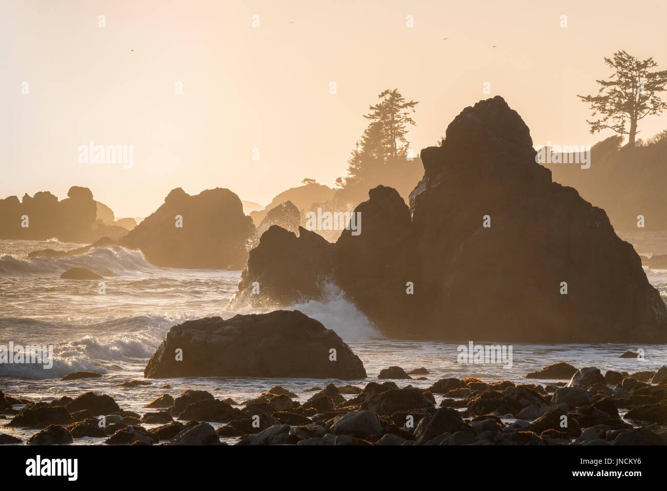 Surf e rocce a Pebble Beach, Crescent City, California. Immagini Stock