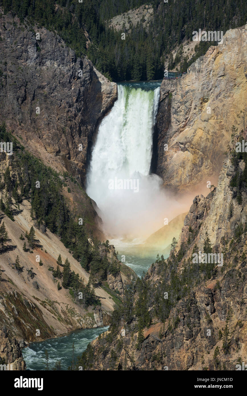 Le cascate Inferiori di Yellowstone River, con rainbow alla base delle cascate, dal punto di artisti, il Parco Nazionale di Yellowstone, Wyoming. Foto Stock