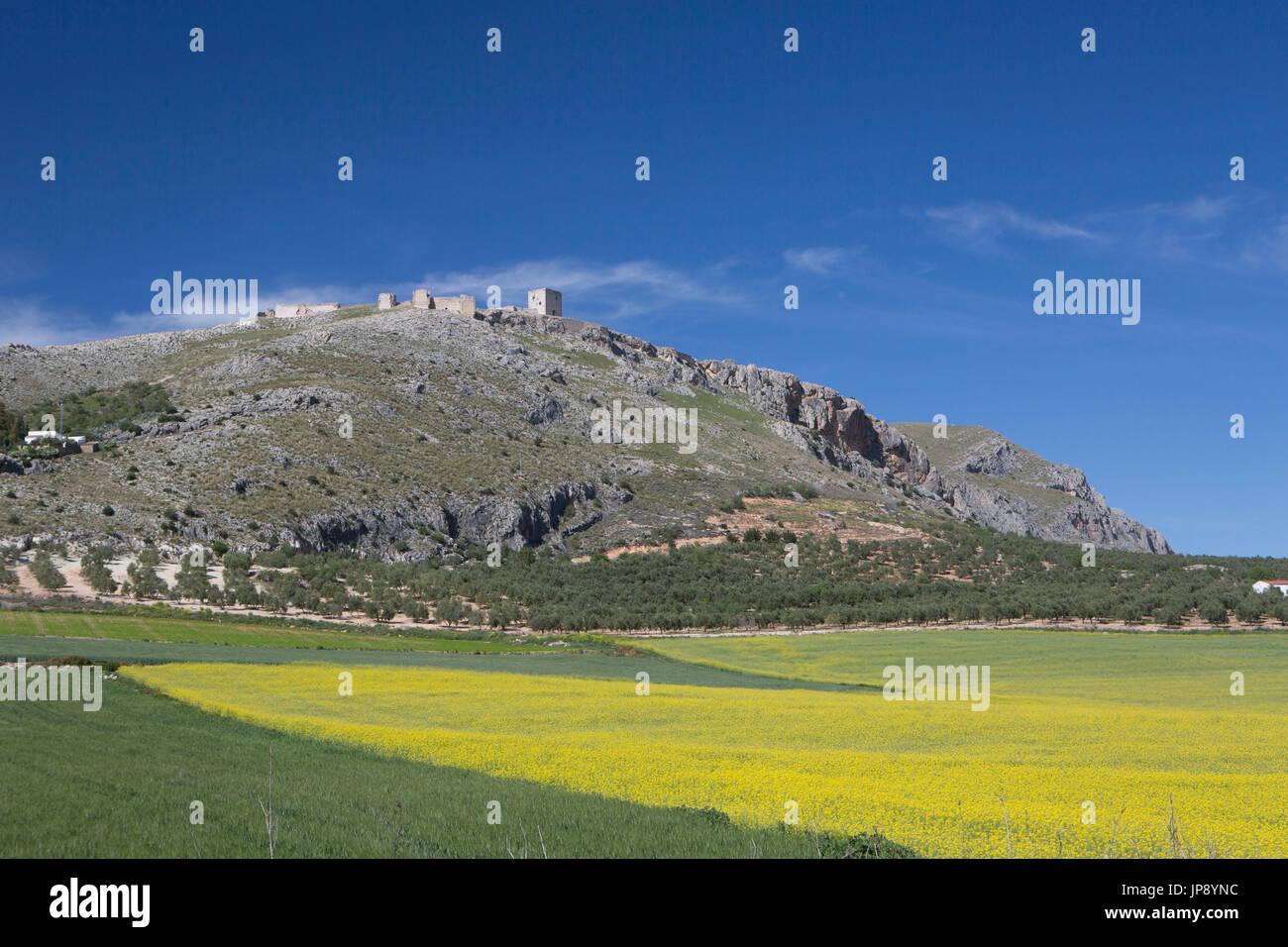 Spagna, Andalusia Regione, Provincia di Malaga, Teba City, Paesaggio vicino a Ronda City Foto Stock