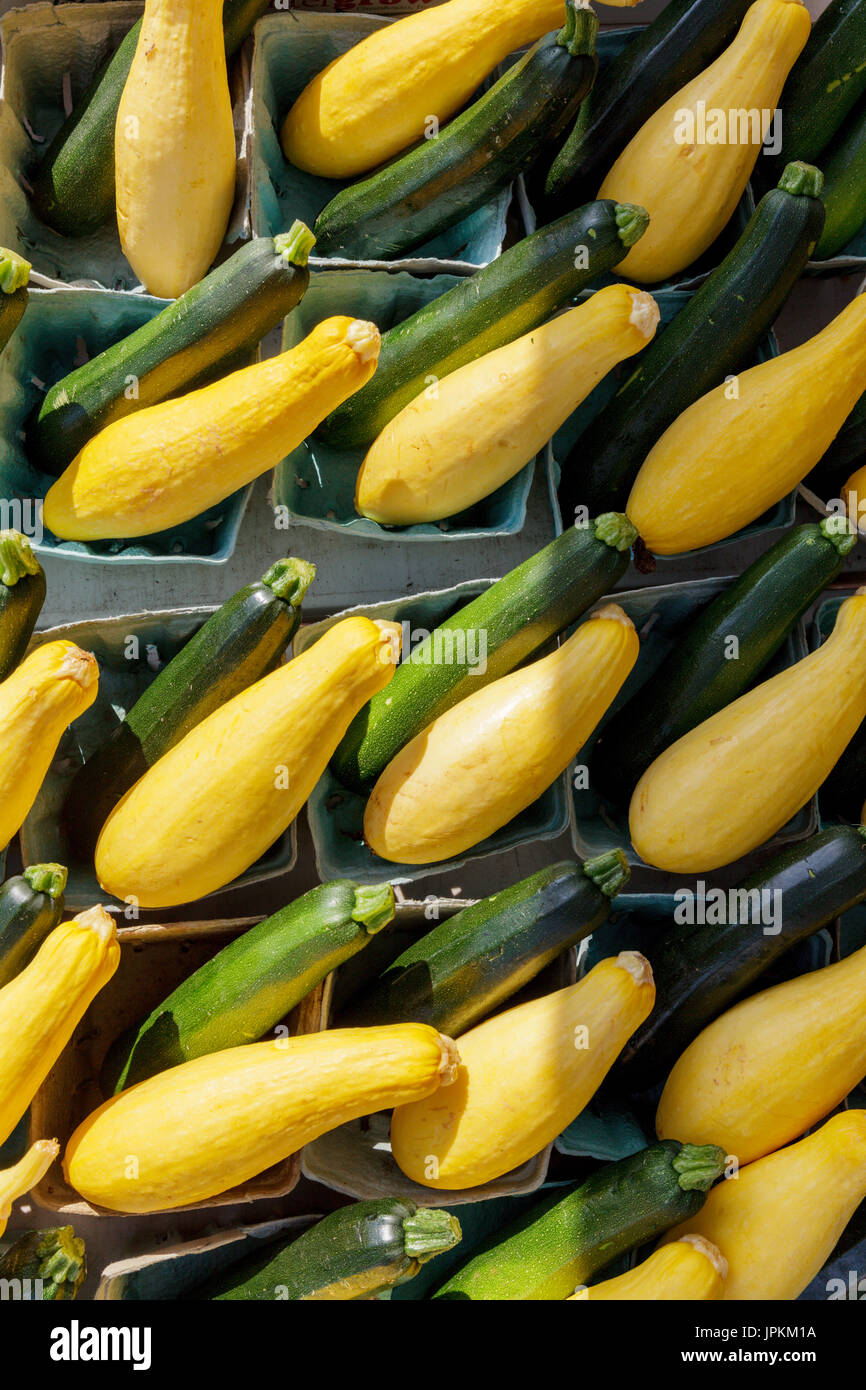 Monawk Valley, nello stato di New York - Estate squash e zucchine per la vendita in un mercato degli agricoltori in Upstate New York Immagini Stock