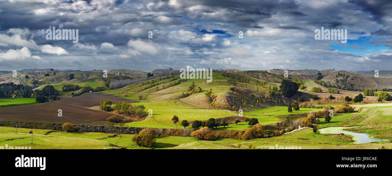 Paesaggio con terreni coltivati e cielo nuvoloso, Isola del nord, Nuova Zelanda Immagini Stock