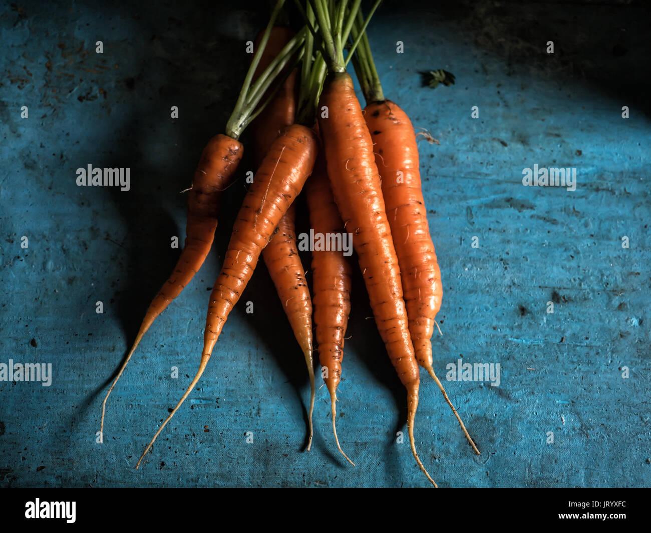 Carote mazzetto freschezza harvest carotene antiossidante della vitamina per ricette Immagini Stock