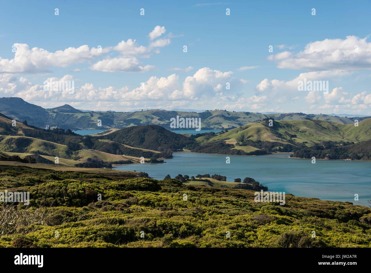 Ingresso Hoopers, ingresso nel verde paesaggio collinare, Dunedin, Penisola di Otago, Isola del Sud, Nuova Zelanda, Oceania Immagini Stock