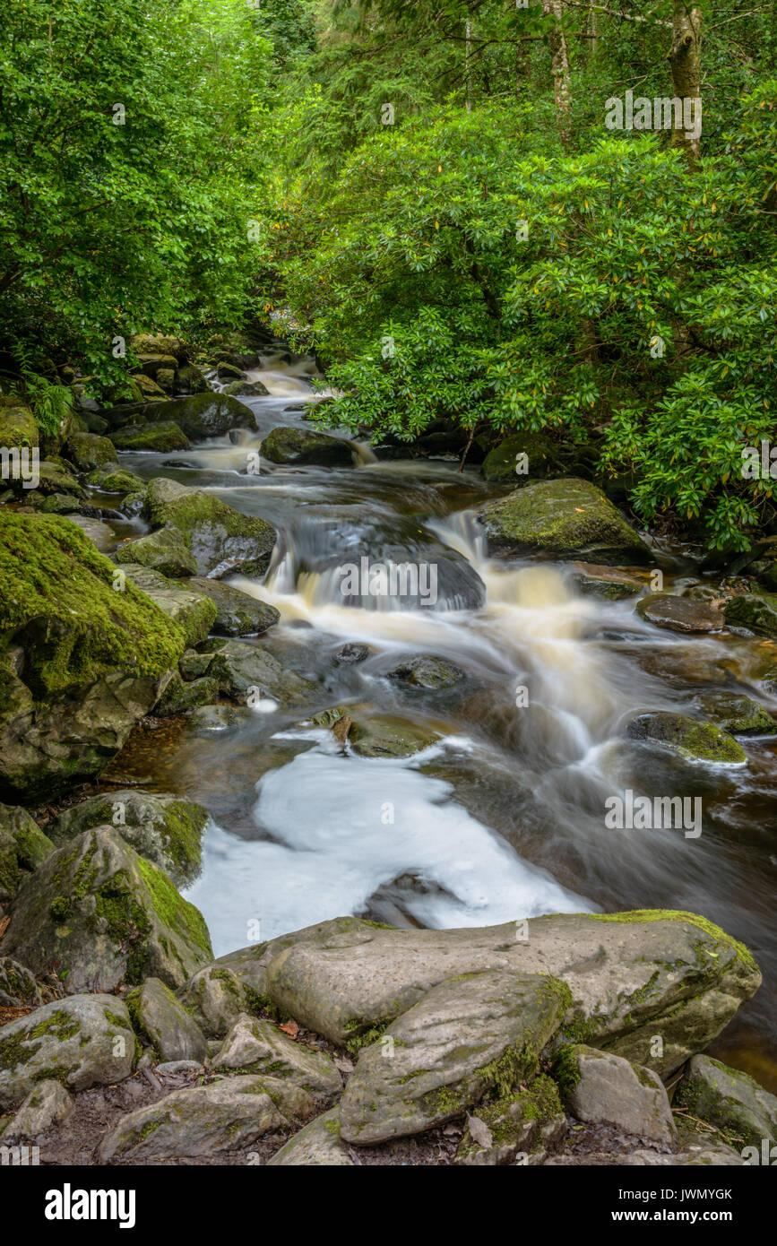 Cascata Torc Irlanda Ring of Kerry Immagini Stock