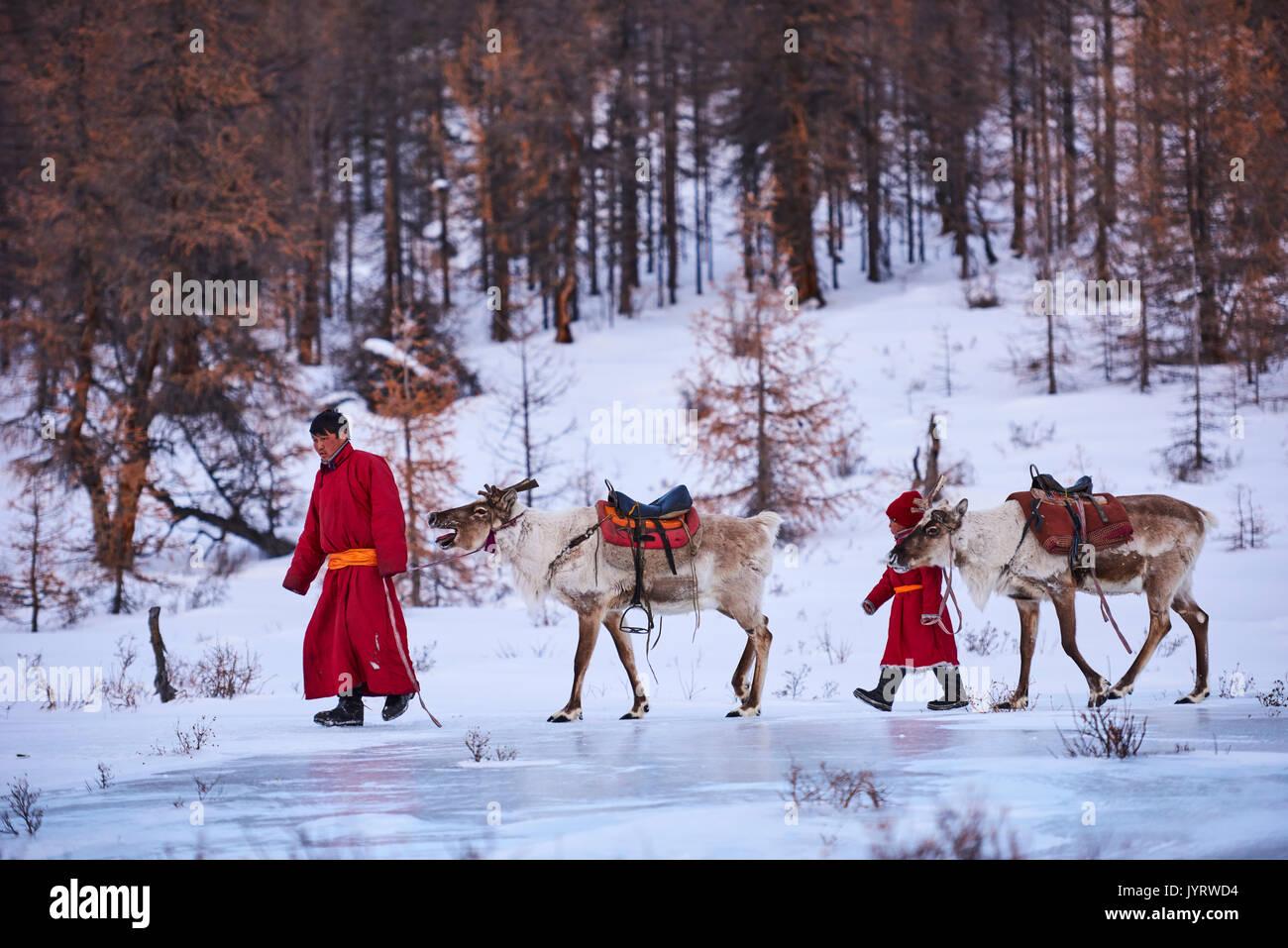 Mongolia, Khovsgol provincia, Tsaatan, renne herder, migrazione invernale, attraversando un fiume congelato Immagini Stock