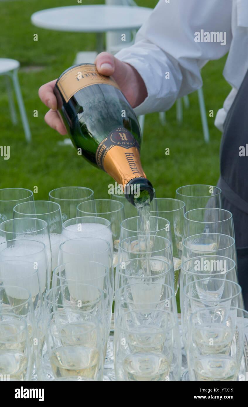 Champagne versando agli ospiti, Svezia. Foto Stock