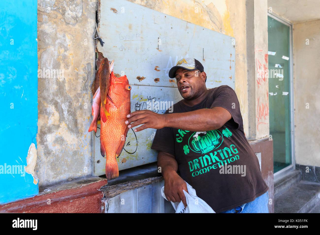 Venditore ambulante di vendere un rosso hind (chiamato anche lucky raggruppatore) pesce fresco in una strada vecchia Havana, Cuba Immagini Stock