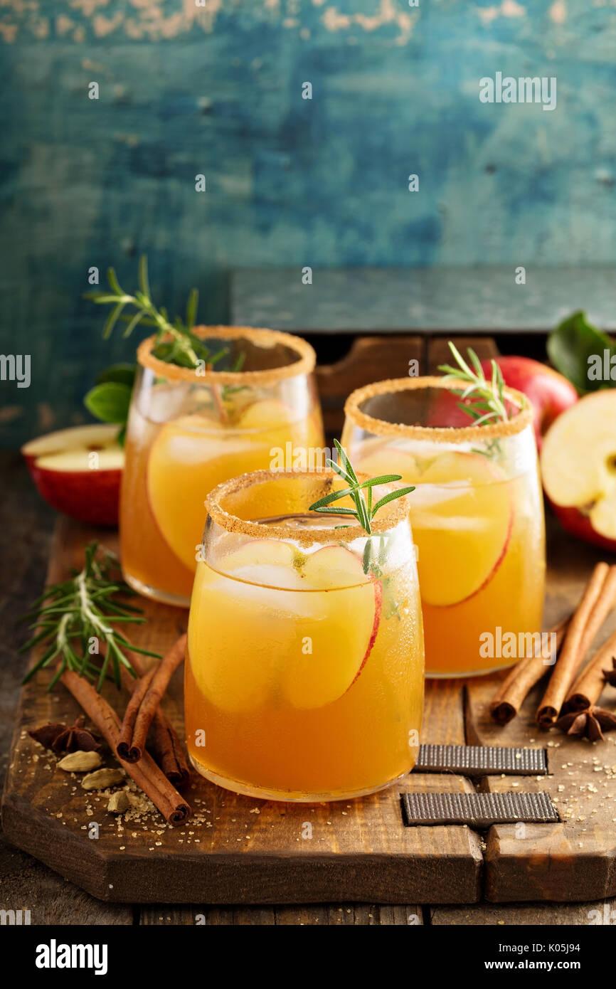 Disco sidro di mela cocktail con l'autunno di spezie Immagini Stock