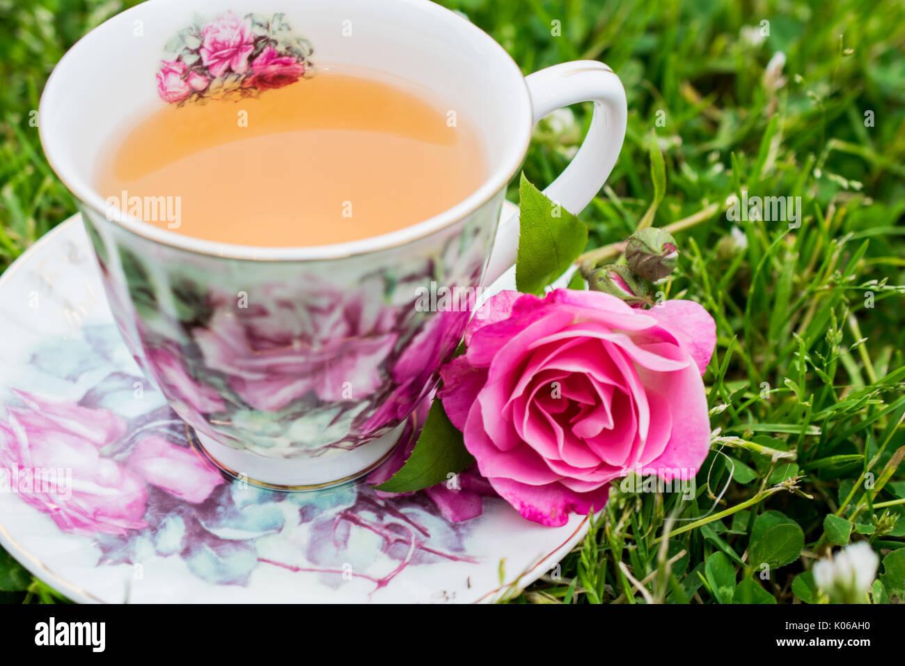 Darjeeling Vittoriano, 1a lavare il tè Darjeeling è uno dei migliori tè nel mondo. Il tè Darjeeling è noto anche come lo champagne del tè. Immagini Stock