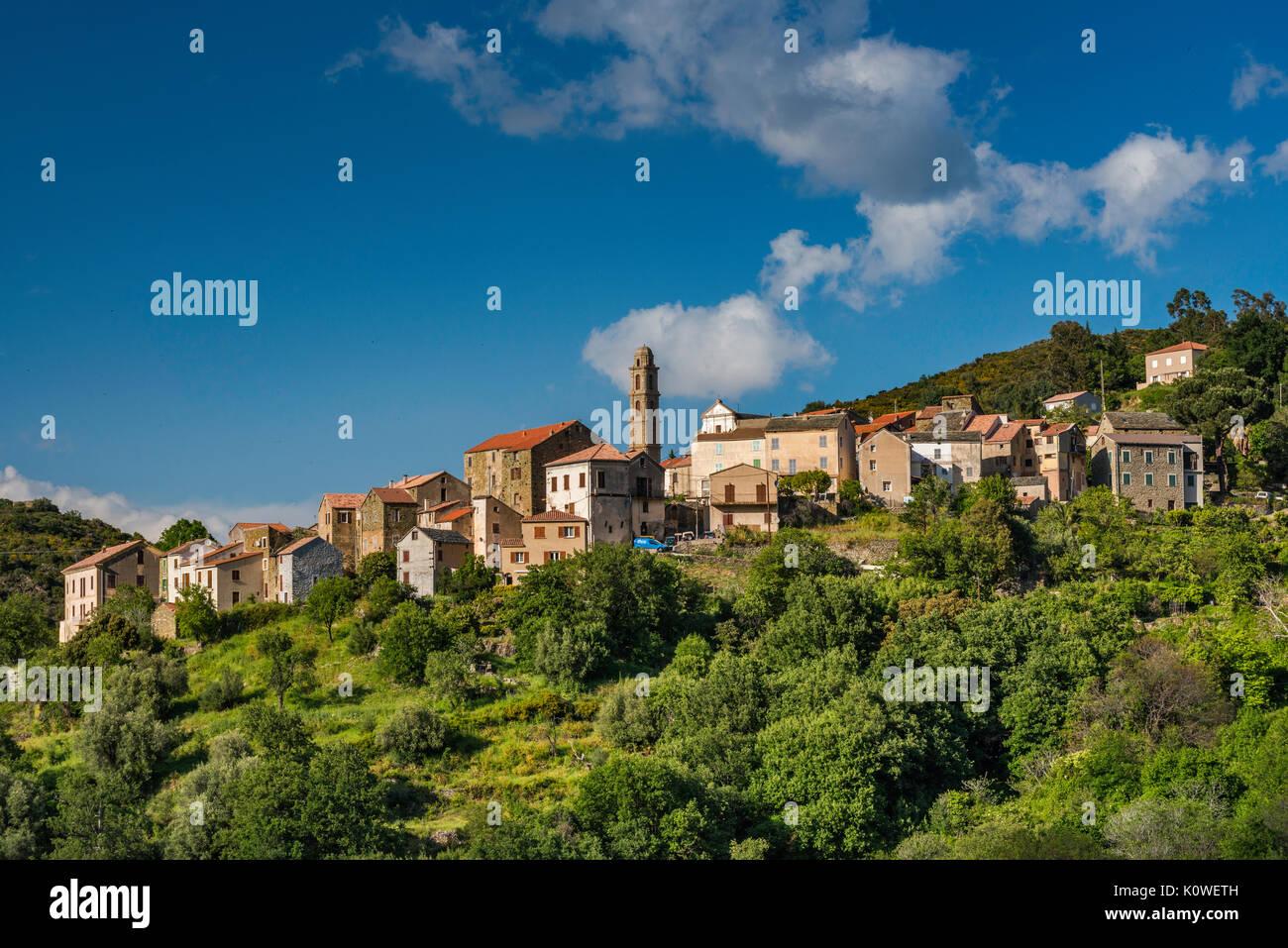 Città sulla collina di Pieve, il Nebbio regione, Haute-Corse reparto, Corsica, Francia Immagini Stock