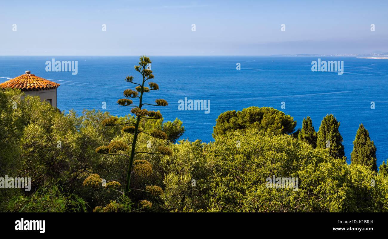 Mare Mediterraneo e alberi a Nizza. Panoramica vista elevata della Riviera Francese, Cote d'Azur, Alpes Maritimes, Francia Immagini Stock