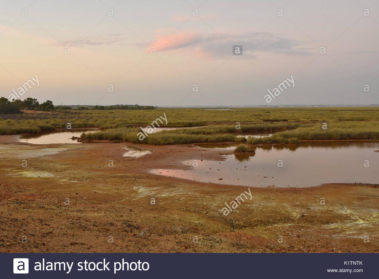 Rifiuti chimici oggetto di dumping in zone umide zona vicino a Huelva Spagna del sud Europa Immagini Stock